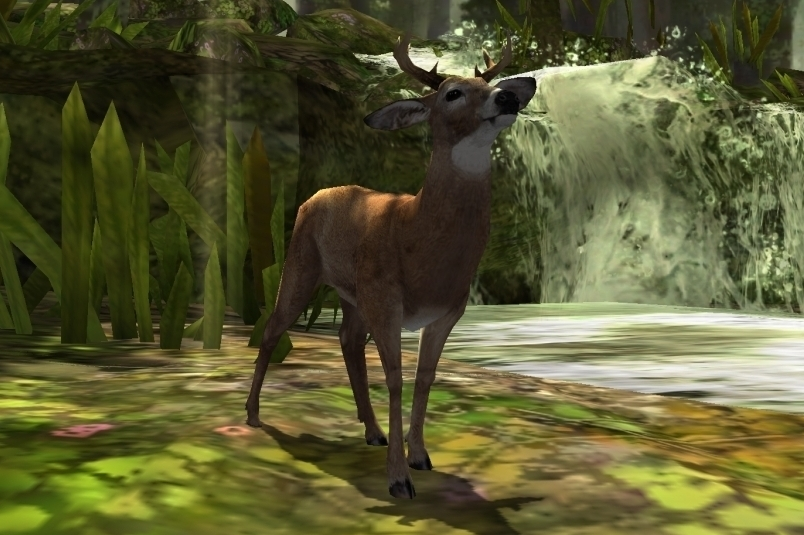 Modojo | Deer Hunter 2014