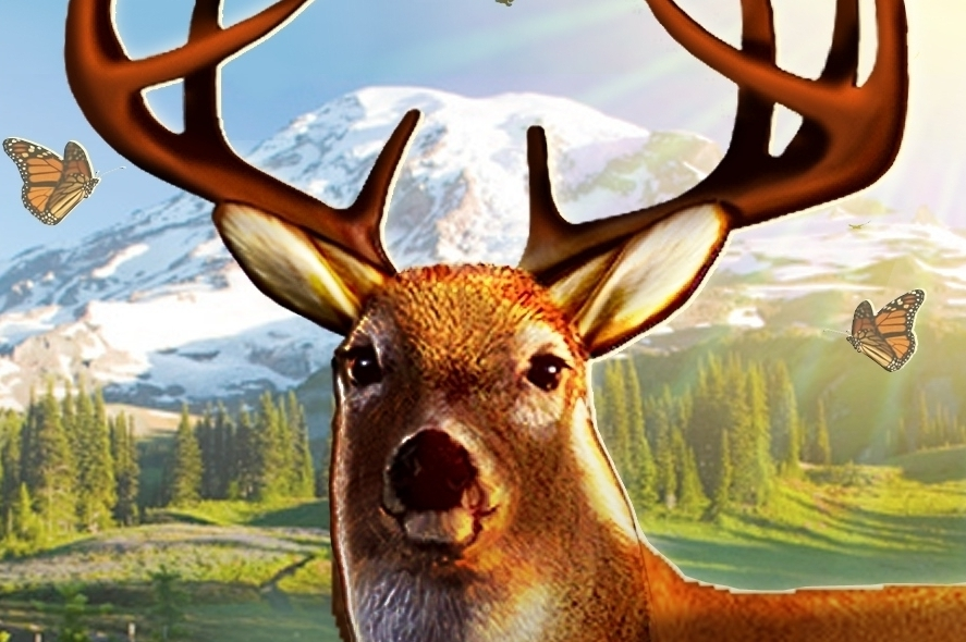 Modojo | The Best Games Like Deer Hunter 2014