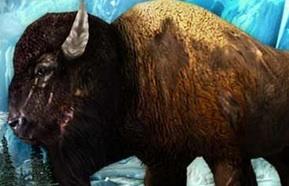Modojo   Deer Hunter 2014 Alaska Update Adds New Animals, Weapons