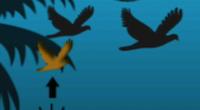Modojo   Fly Birdie: Flappy Bird Flyer Cheats And Tips