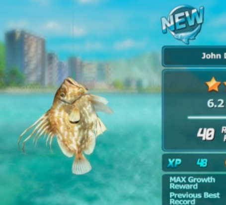 Modojo | Ace Fishing: Wild Catch - The Fish Tank