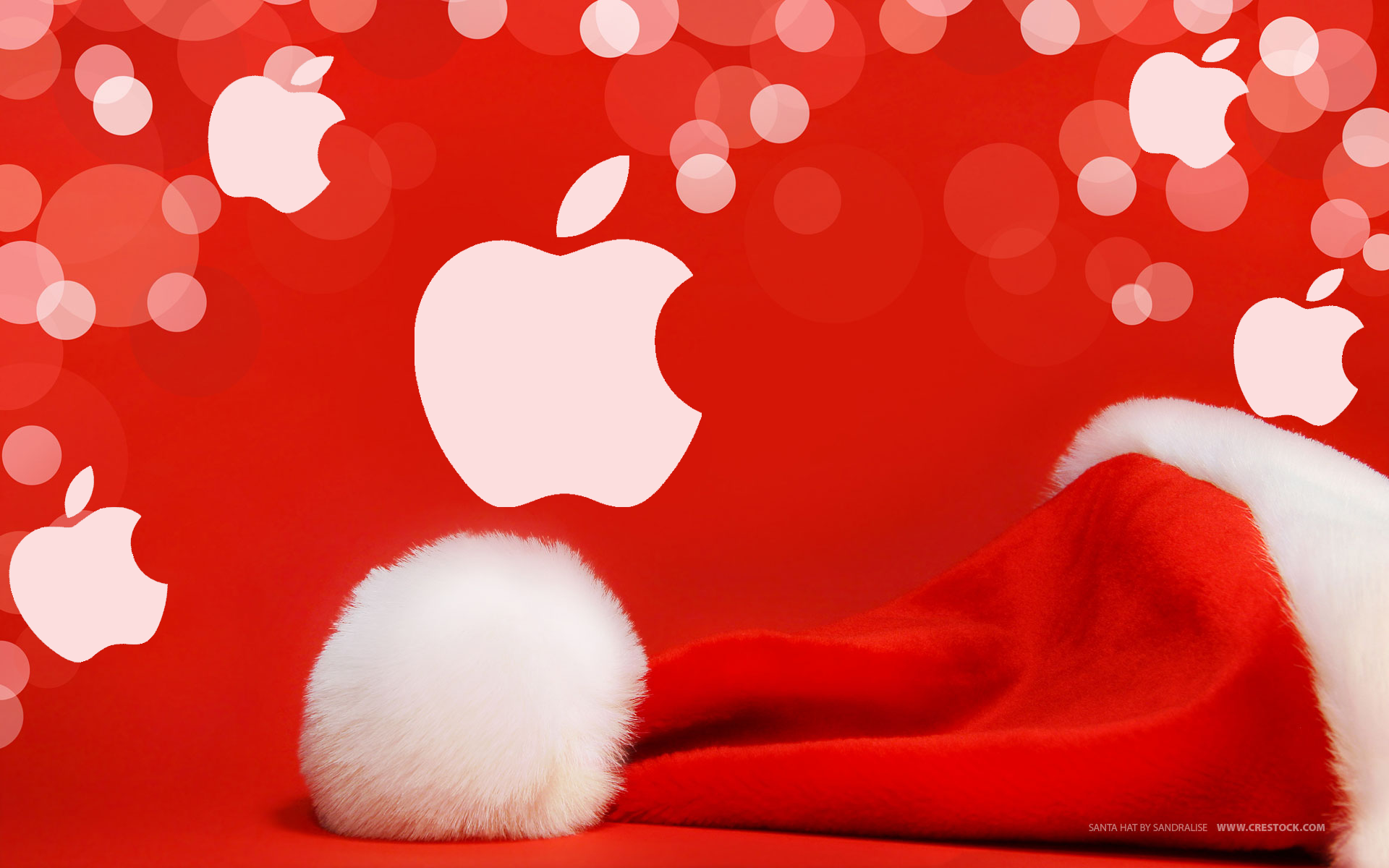 Modojo | Five Great Holiday Gifts For iPhone 6/6 Plus Owners