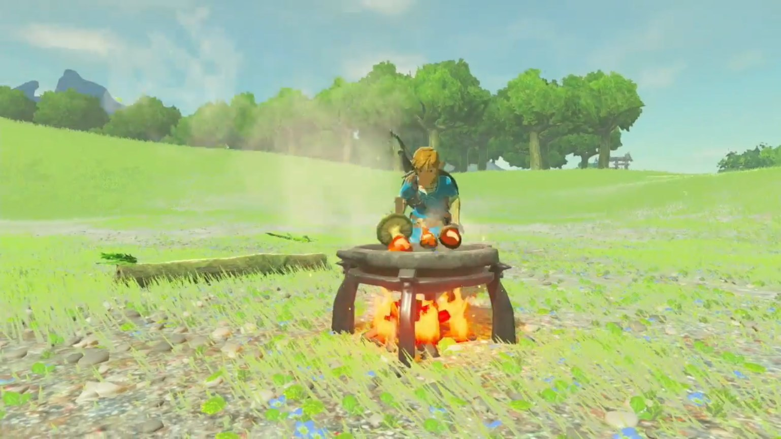 Modojo | Zelda: Breath Of The Wild - How To Cook Food And Elixirs